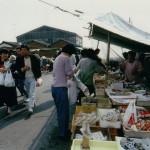 market02